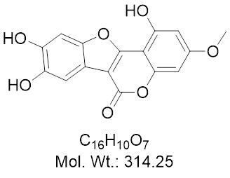 GLXC-13362