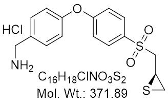 GLXC-23963
