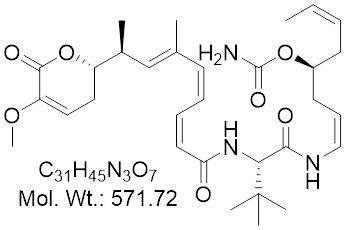 GLXC-24176