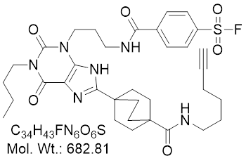 GLXC-24181