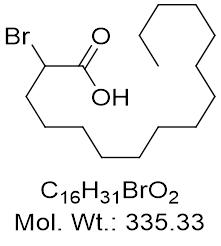 GLXC-24381