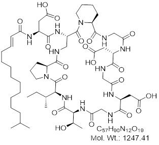 GLXC-24404