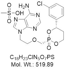 GLXC-24542