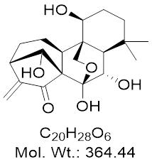 GLXC-13197