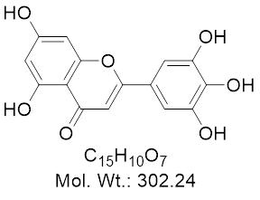 GLXC-10938
