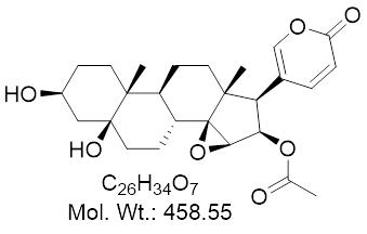 GLXC-13677