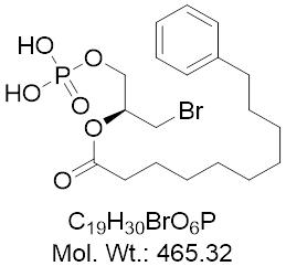 GLXC-21948