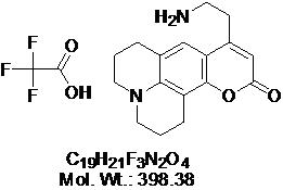GLXC-03891