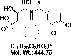 GLXC-04962