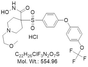 GLXC-06258
