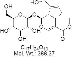GLXC-06546