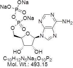 GLXC-07366