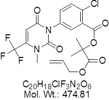 GLXC-07591