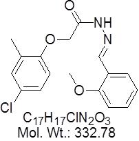 GLXC-08804
