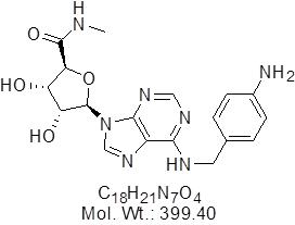GLXC-07367